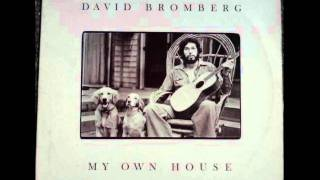 David Bromberg - To Know Her is to Love Her