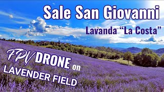 FPV drone flying on a lavender field - Cinematic Freestyle - Sale San Giovanni Italy