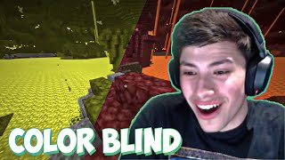 This is how GeorgeNotFound sees Minecraft (color blind)