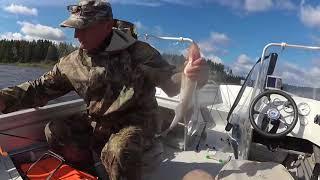 База рыбалка на рыбинском водохранилище