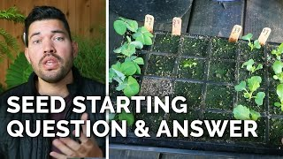 Answering 18 of Your Seed Starting Questions!