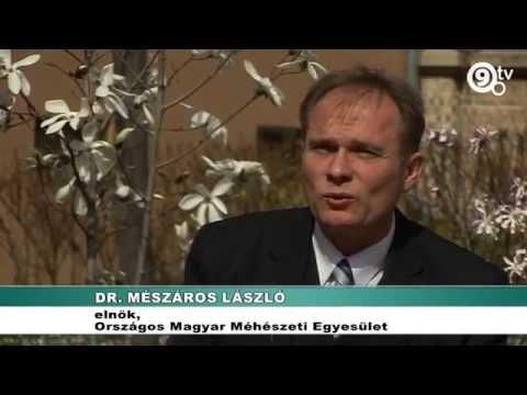 Dexametazon intramuszkulárisan ízületi fájdalmak kezelésére