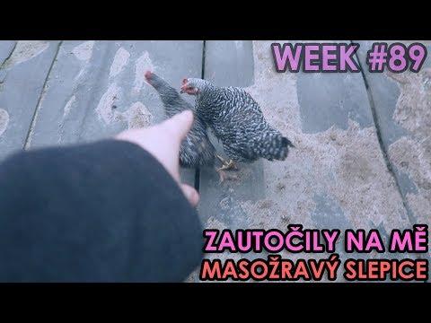 ZAÚTOČILY NA MĚ MASOŽRAVÝ SLEPICE - WEEK #89