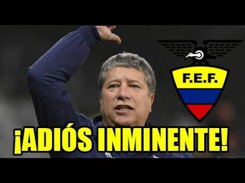 """EL COMERCIO: """"BOLILLO GÓMEZ DEJARÁ DE SER SELECCIONADOR DE ECUADOR"""""""