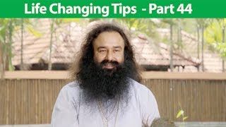 Life Changing Tips Part 44 | Saint Dr MSG Insan