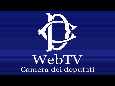 webtv.camera.it - Presentazione Relazione Annuale 2017 Inail - (27-06-2018)