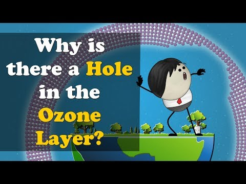Why Is There A Hole In The Ozone Layer? | #aumsum #kids #education