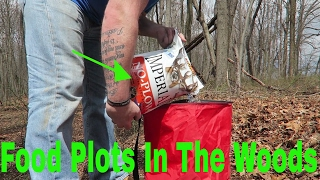 How To Plant A Food Plot For Deer In The Woods | imperial no plow