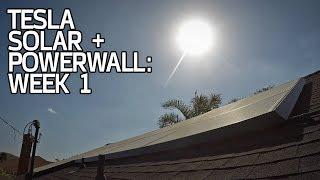 SYSTEM ACTIVATED! Tesla Solar + Powerwall Week 1