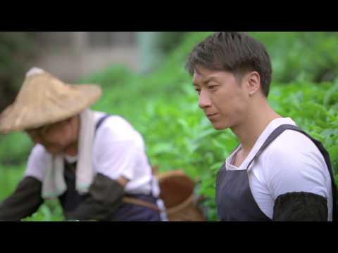 故鄉‧茶香(微電影)...........part 1