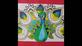 Dibujando con Azor pavo real