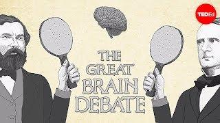 偉大なる脳の議論-テッド・アルトシュラー