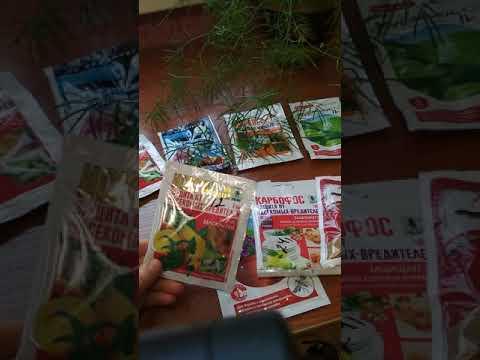 Препараты от колорадского жука. Часть 1