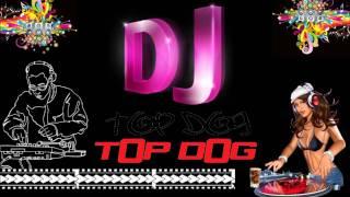 Dj tOp dOg - Move Your Body Remix
