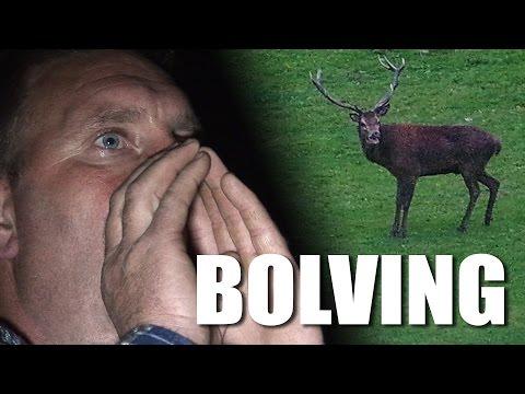 Bolving