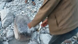 preview picture of video 'Catching fish (Ashla) in karnali by using jharaula'