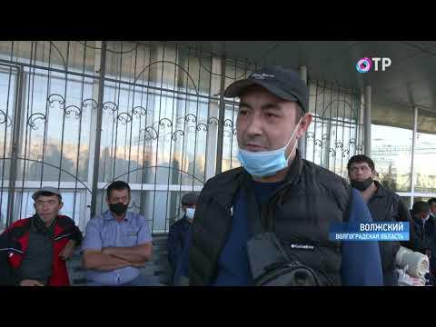 Более 800 застрявших в России трудовых мигрантов из Узбекистана отправили на родину