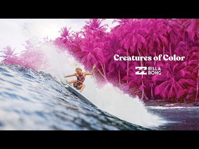 Criaturas De Color