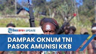 Oknum TNI Diduga Pasok 604 Butir Amunisi ke KKB, Makin Perpanjang Siklus Tindak Kekerasan di Papua