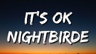Musik-Video-Miniaturansicht zu It's OK Songtext von Nightbirde