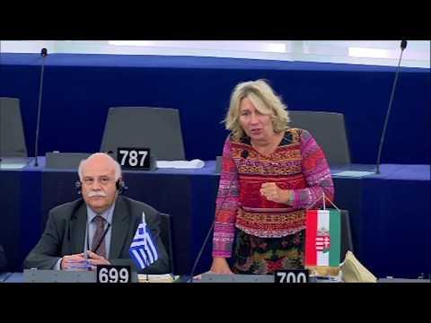"""Szíveskedjenek válaszolni: mekkora kárt okozott Görögországnak a migráció? Morvai a """"görög vitában"""