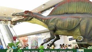 preview picture of video 'Exposição mostra réplicas de dinossauros em shopping de Manaus'