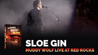 """Joe Bonamassa - """"Sloe Gin"""" - Muddy Wolf at Red Rocks"""