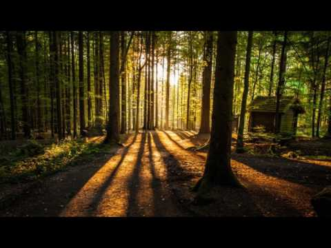 Volbeat - Mary Jane Kelly Tablatura .gp5