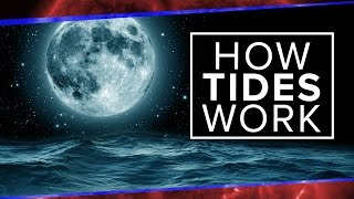 What Physics Teachers Get Wrong About Tides!   Space Time   PBS Digital Studios