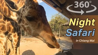 Night Safari in Chiang Mai in Thailand Video | 360 Video