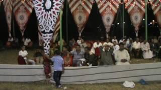 الشيخ أحمد عبدالهادي حفل الأسكندرية