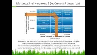Анализ бизнеса по матрице Shell