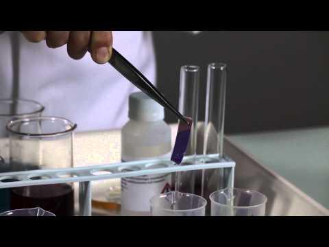 Protozoák és helminthiasis diagnosztizálásának módszerei
