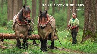 Holzrücker   Waldarbeit Mit Pferden