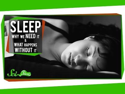 Why We Need To Sleep So Much