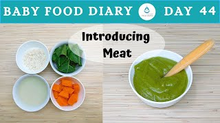 Baby Food Diary | Day 44 | How To Introduce Meat To Baby | 7 Month Old Baby Food