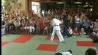 preview picture of video 'Ju-Jutsu Demonstration in Herzogenaurach'