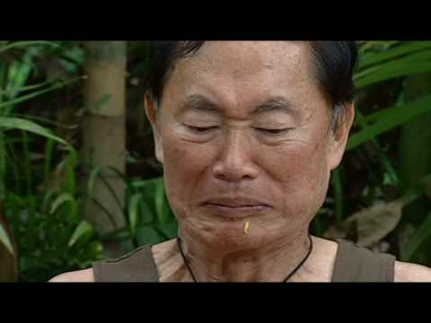 'I'm a Celebrity's most stomach-churning Bushtucker Trials ...