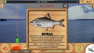 На что клюет волжская сельдь в реальной рыбалке
