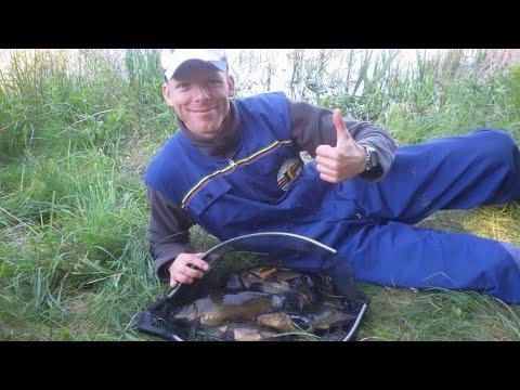 Lynų žvejyba plūdine meškere apaugusiame ežere ( 2 DALIS )