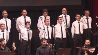 Açıköğretim Sistemi Görme Ve İşitme Engelliler Türk Halk Müziği Topluluğu Konseri - Tek Parça