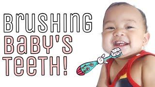 TIPS: Brushing Baby's Teeth! | When to start?