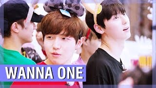 WANNA ONE FUNNY MOMENTS