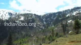 Kothi Picnic Spot in Manali, Himachal Pradesh