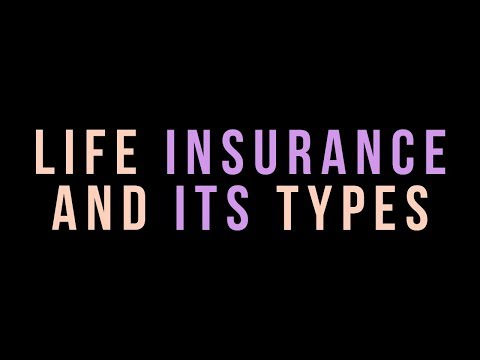 Life Insurance And Its Types