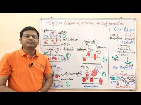Lijekovi hipertenzija i bradikardija
