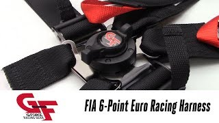 In the Garage™ with Parts Pro™: G-FORCE Racing Gear FIA 6pt Euro Cam Racing Harness
