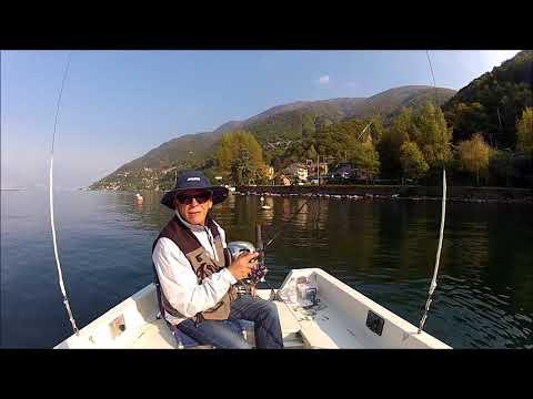 Inverno pescando su lampone