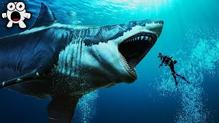 Top 20 Largest Sea Creatures that EVER Existed! | Kholo.pk