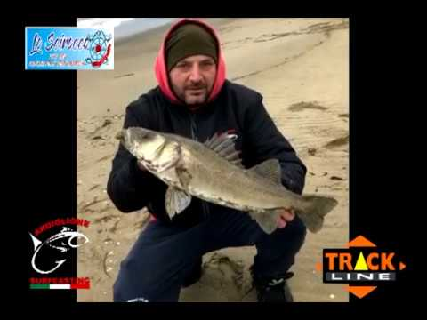 Inverno da pesca grayling video lenok